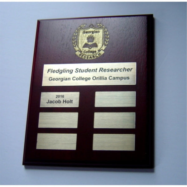 Annual Wall Plaque Award