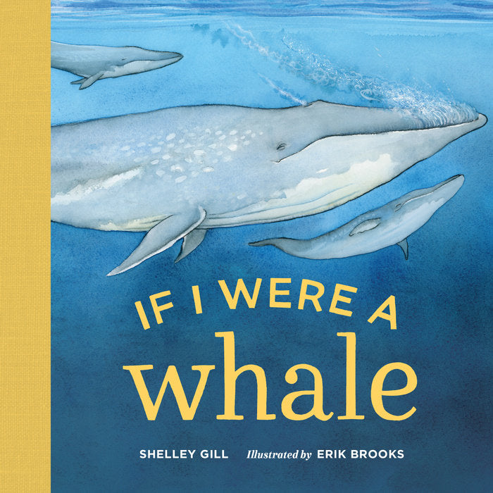 If I Were A Whale Board Book