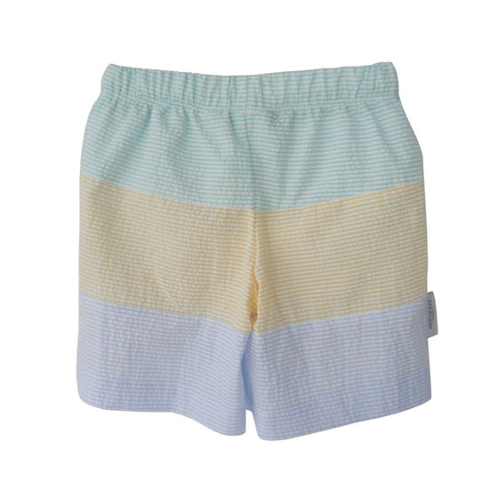 Captain's Colorblock Swim Trunks