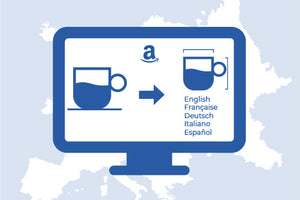 MULTILINGUAL INFOGRAPHICS DESIGN FOR AMAZON EUROPE