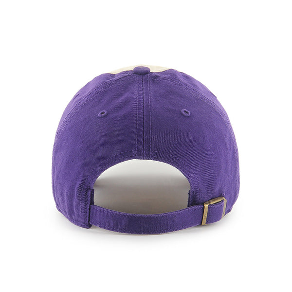 Vikings '47 Brand Endicott Adjustable Hat