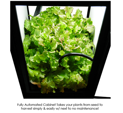 Image of SuperCloset SuperBox CFL Grow Cabinet