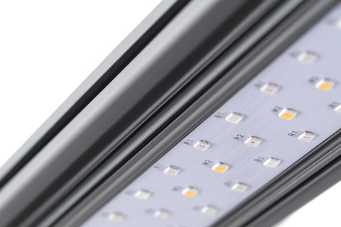 KIND LED X-Series X40 / X80 Bar Light