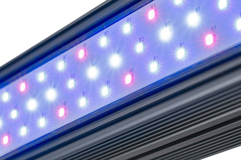 KIND LED X Series XD75/XD150 LED Bar Indoor Grow Light