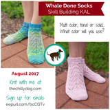 Skill building KAL sock knitting pattern