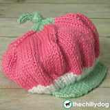 Knit Baby Strawberry Costume - Knit, infant strawberry hat, skirt and leg warmer costume photo prop pattern