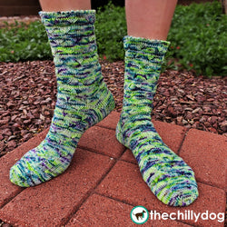Caretaker Socks Pattern - Toe up sock knitting pattern with free video tutorials demonstrating Emily Ocker's circular cast on, double lifted increases, daisy stitch, Japanese/pinned short row heels and a stitch by stitch picot hem
