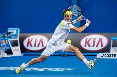 David Ferrer, Number 4 in the World, Number 1 in Style