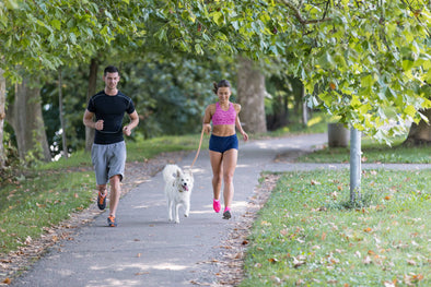 Should You Go Running with Your Dog?