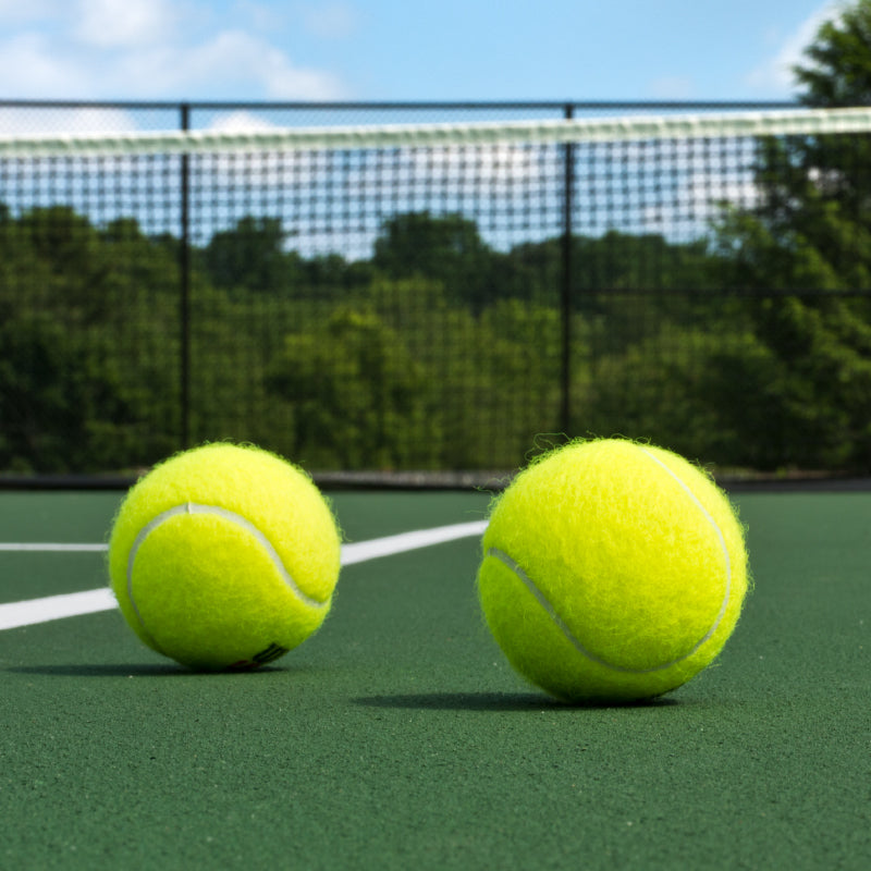 Free Shipping on Select Penn Tennis Ball Cases