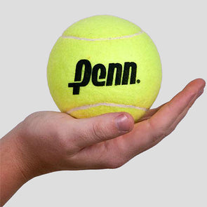 "Penn 4"" Large Tennis Ball"