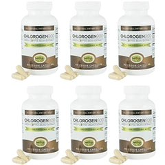 Chlorogen800 Green Coffee Bean Extract (6-pack)