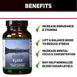 E3Live E3AFA 500ct (500mg); 1 bottle - Gluten Free, Vegan, Certified Organic, No Additives or Preservatives