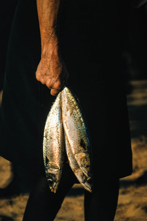 Woman's Hand with Two Fish, Portugal