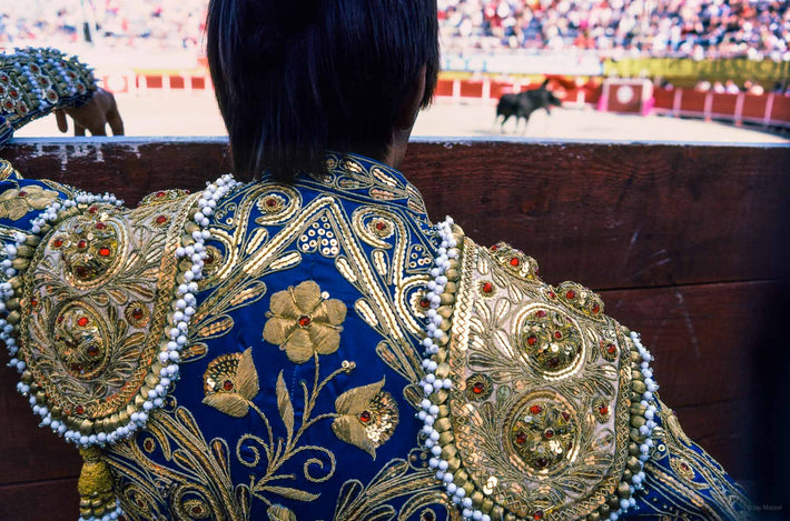 Back of Matador in Blue, Arles