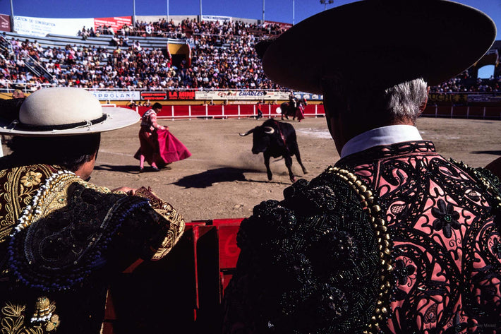 Back of Two Matadors, Arles