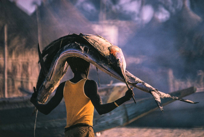 Carrying Fish on Head, Senegal