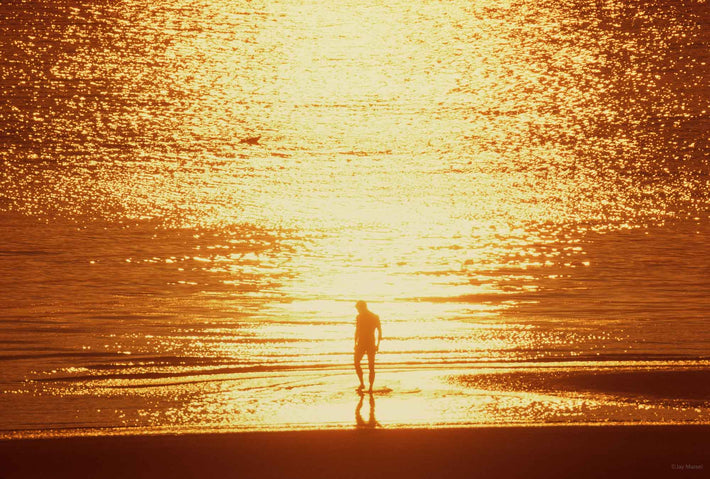 Backlit Figure, Sea Sunset