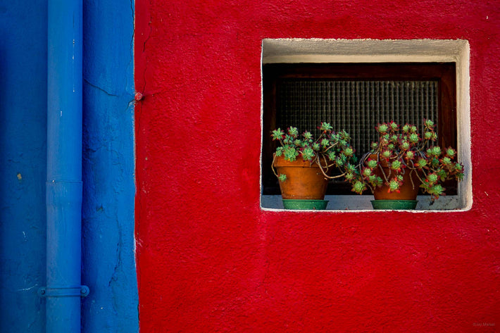 Blue Red Wall, Plants, Burano