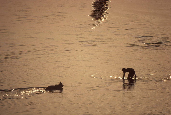 Silhouette of Dog, Man in Water