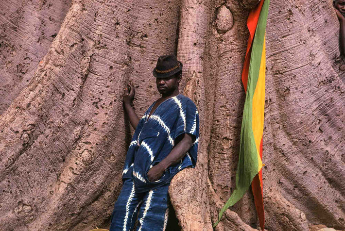 Senegalese Lutte Wrestling, Spectator in Blue Against Tree, Senegal