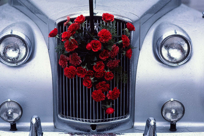 Roses on Rolls Royce, Ireland