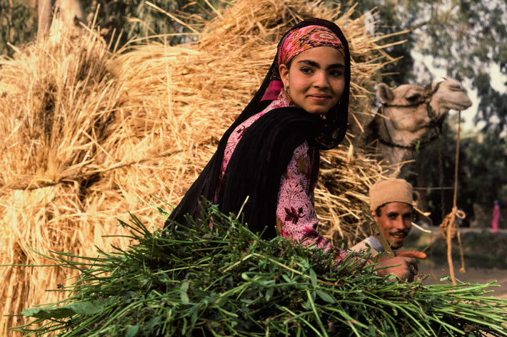 Woman with Hay and Grasses, Egypt