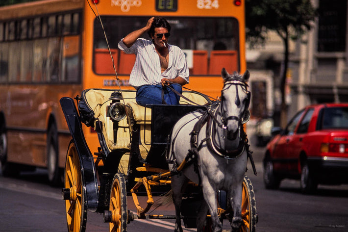 Driver, Horse Carriage and Bus