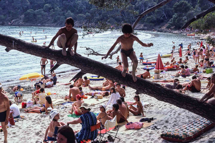 Two Kids on Branch, Full Beach Underneath