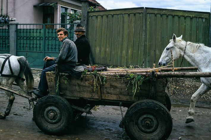 Two Men and Two Horses, Romania