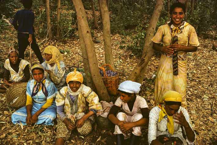 Young Girls in Forest, Marrakech