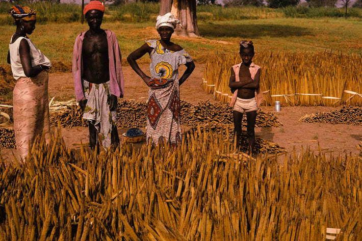 Four People in Field, Senegal