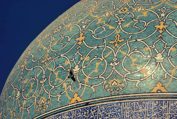Close-up of Dome and Flying Bird, Iran