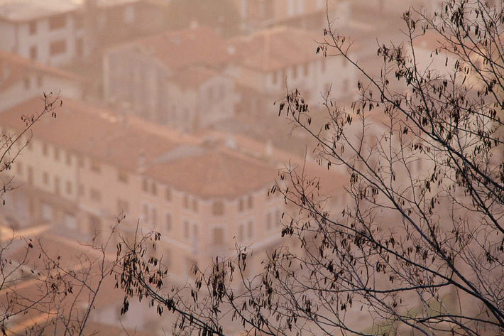 Branches and Soft Buildings, Vicenza