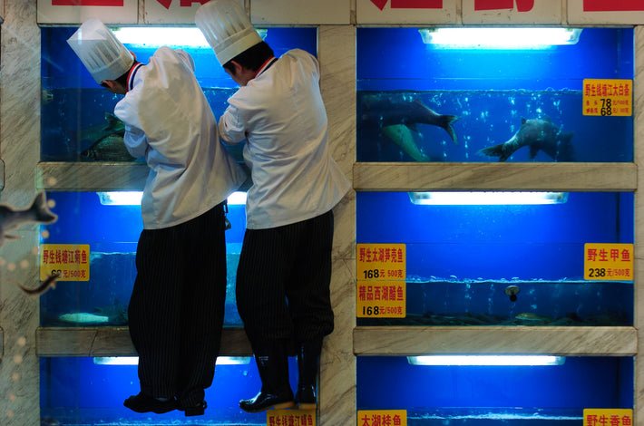 Two Chefs, Blue, with Fish, Shanghai
