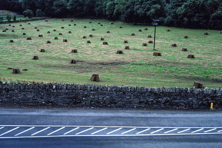 Road, Field of Hay, Ireland