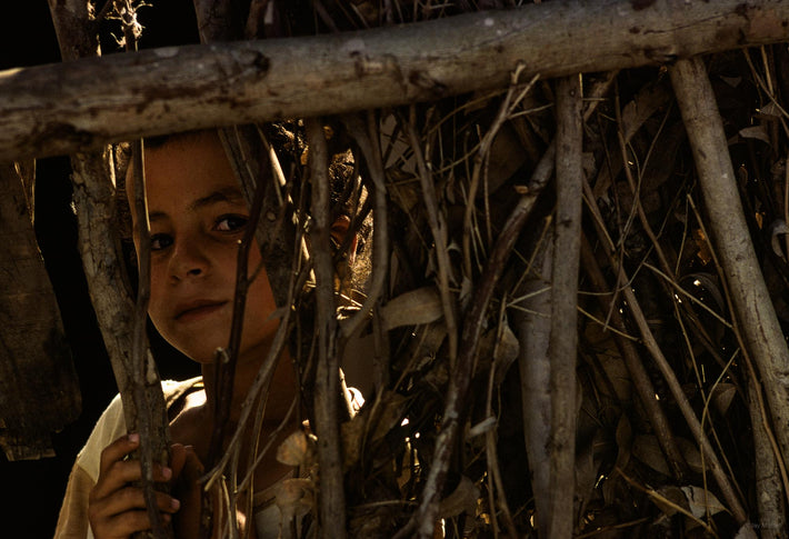 Young Girl Seen Through Branches of Wood, Marrakech