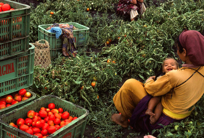 Woman with Baby, Tomatoes in Boxes, Marrakech