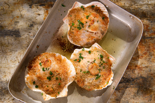 Stuffed Scallop Shells