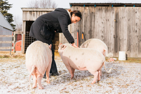 Allie Gadziemski and pigs at vegan sanctuary for rescued animals