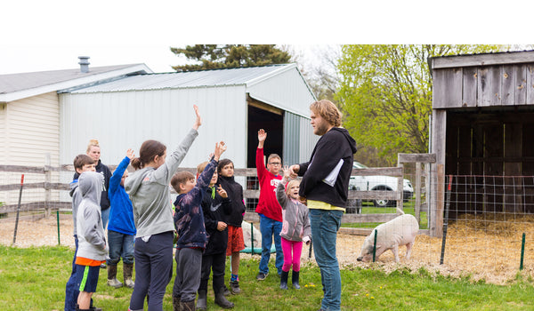 Kids learning activities with potbelly pigs