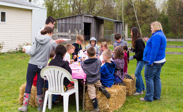 hay bales and craft time, animal refuge grand rapids