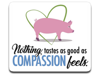 Nothing tastes as good as compassion feels- vegetarian or vegan car decal