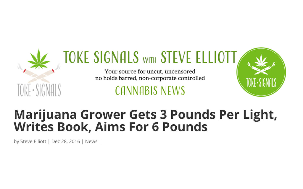 Toke Signals - Marijuana Grower Gets 3 Pounds Per Light, Writes Book, Aims For 6 Pounds