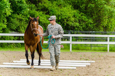 Military Programs at Victoria Acres Equine Facility