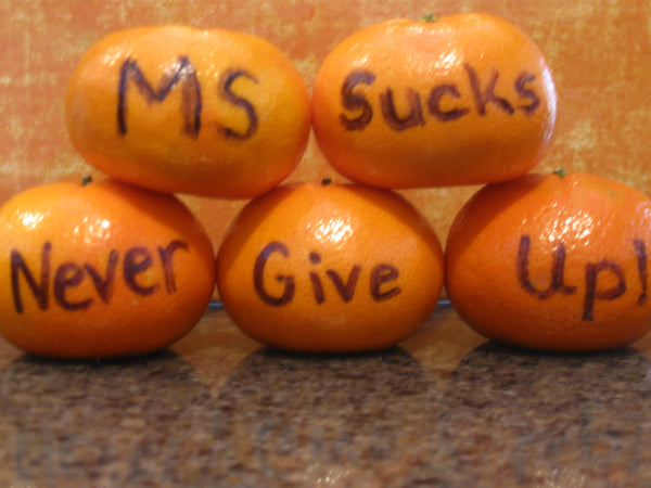 MS Sucks! Never Give Up! Be Brave Be an MS ASSASSIN!