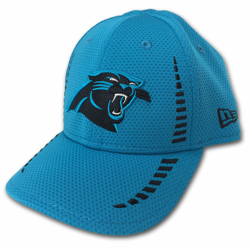 Panthers Team Colors Hat