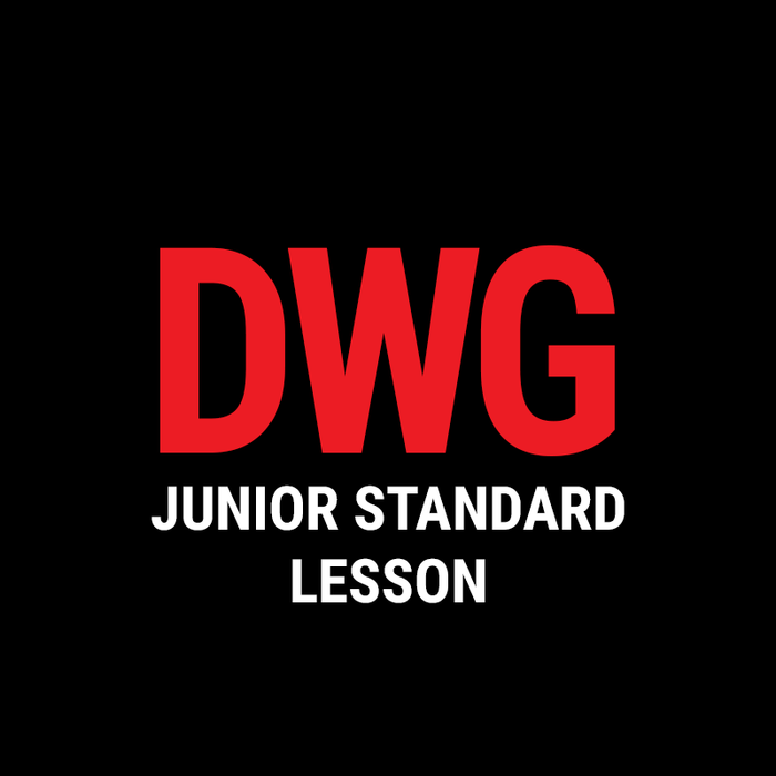 Junior Standard Lesson