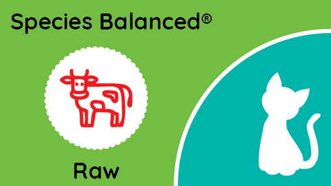 Species Balanced® Raw Beef Dinner for Cats