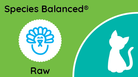 Species Balanced® Raw Turkey Dinner for Cats